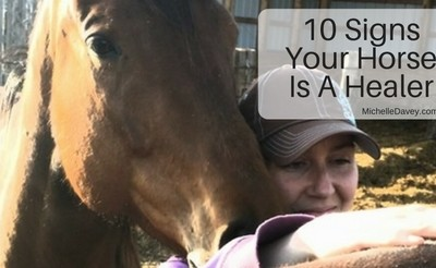 10 Signs Your Horse Is A Healer